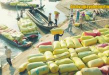 Dịch vụ xin Giấy chứng nhận Y tế cho sản phẩm xuất khẩu
