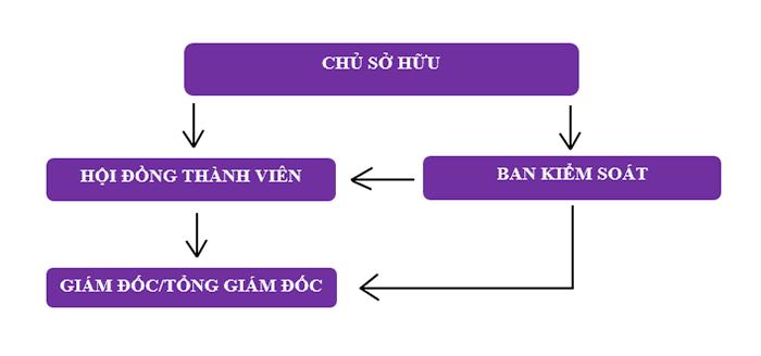 Mô hình 2: Tổ chức quản lý và hoạt động của Công ty TNHH MTV - TH chủ sở hữu là tổ chức (Ảnh VinaUcare)