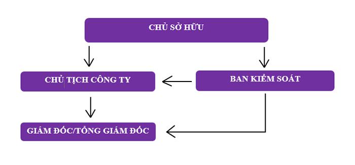 Mô hình 1: Tổ chức quản lý và hoạt động của Công ty TNHH MTV - TH chủ sở hữu là tổ chức (Ảnh VinaUcare)