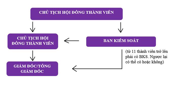 Mô hình tổ chức quản lý và hoạt động của Công ty TNHH 2 thành viên trở lên (Ảnh VinaUCare)